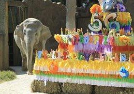 Con un pastel especial celebraron el 56 cumpleaños de Trompita. (Foto, Presa Libre: Carlos Hernández)