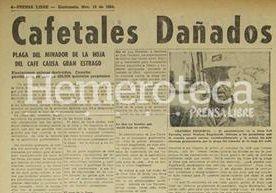 Un repaso a la historia de la producción de café nacional entre crisis y bonanza.