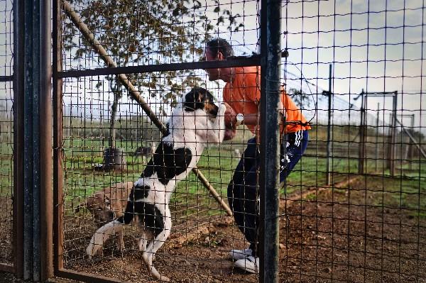 Un preso de la cárcel de Monsanto abraza a un perro en la perrera de la prisión. (AFP).