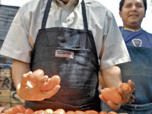 Cultivos de tomate afectados por las lluvias. (Foto Prensa Libre: Hemeroteca)