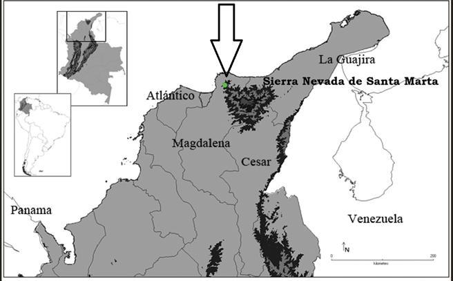 Mapa del lugar dónde fue descubierta la Kankuamo marquezi. (Foto Prensa Libre: Zookeys)