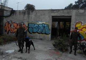 <p>Dos integrantes de la unidad canina del Ejército de Guatemala apoyan a la PNC en operativos de rutina en la calzada Roosevelt. (Foto Prensa Libre: Cortesía Ejército)</p>