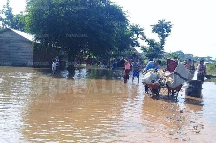 Dentro de las comunidades del municipio de Las Cruces en Petén también fueron dañadas áreas de cultivo. (Foto, Prensa Libre: Rigoberto Escobar).