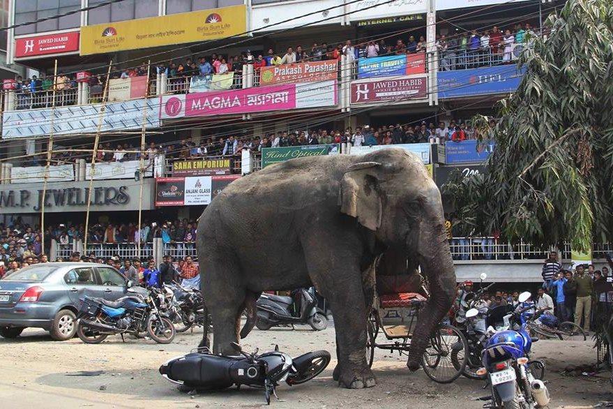 Los habitantes de Bengala, perdieron varias pertenencias por el suceso. (Foto Prensa Libre: AP)