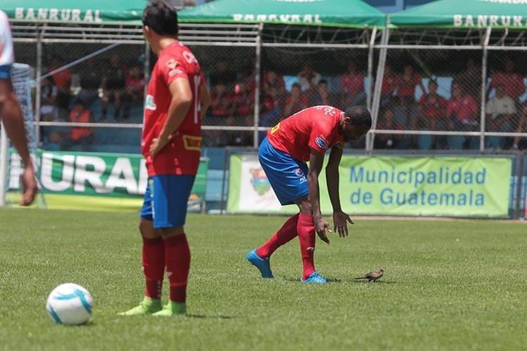 Denniss López tuvo un episodio desafortunado durante el partido en El Trébol. (Foto Prensa Libre: Norvin Mendoza)