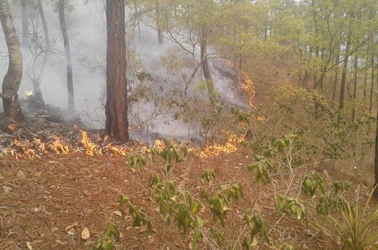 Áreas boscosas de Huehuetenango y El Progreso sufren por el fuego.