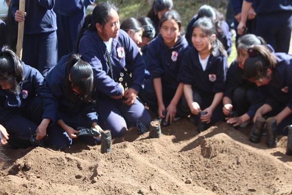<p>Estudiantes del colegio Pedro de Bethancourt siembran semillas de distintas especies de árboles. (Foto Prensa Libre: Édgar Domínguez) <br></p>
