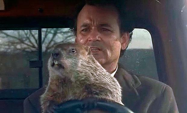 La cinta El día de la marmota tendrá su versión teatral. (Foto Prensa Libre: Hemeroteca PL)