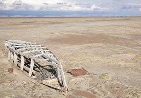 El ser humano causa a diario un gran daño al medio ambiente.