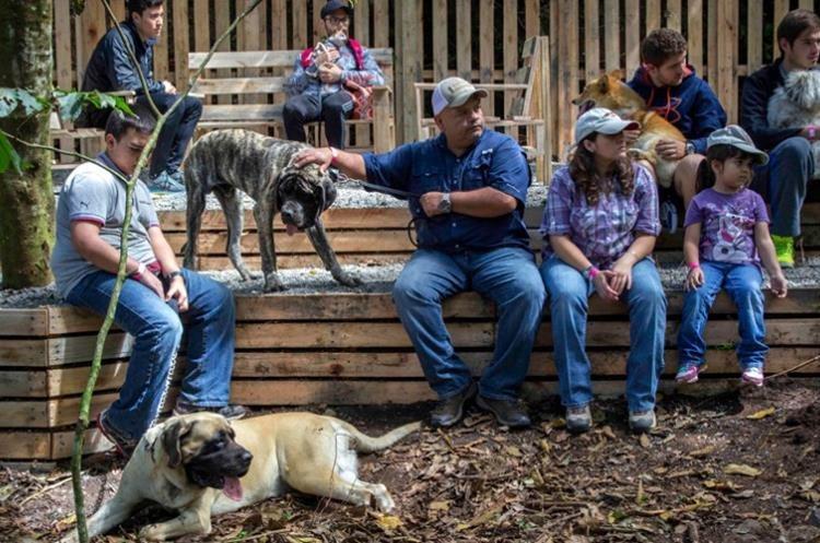 El DogPark está dentro de las instalaciones del parque ecológico Green Rush, apto para toda la familia. (Foto Prensa Libre: Green Rush).