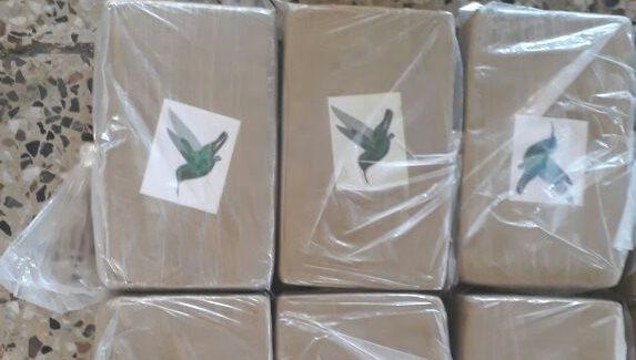 Los paquetes de droga tenían la imagen de un colibrí. (Foto Prensa Libre: Cortesía Ejército)