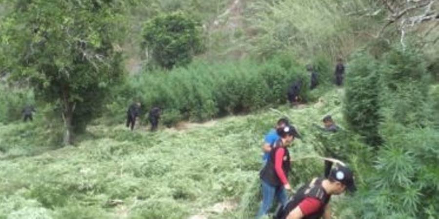 Una de las áreas donde se llevó a cabo el operativo antinarcótico en Totonicapán. (Foto Prensa Libre: MP).