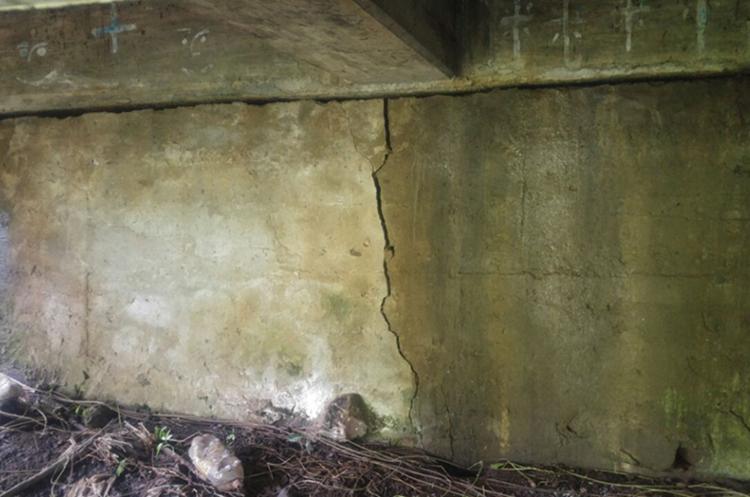 Base del puente Carmen de Mirón que presenta una grieta. (Foto Prensa Libre: Rolando Miranda)