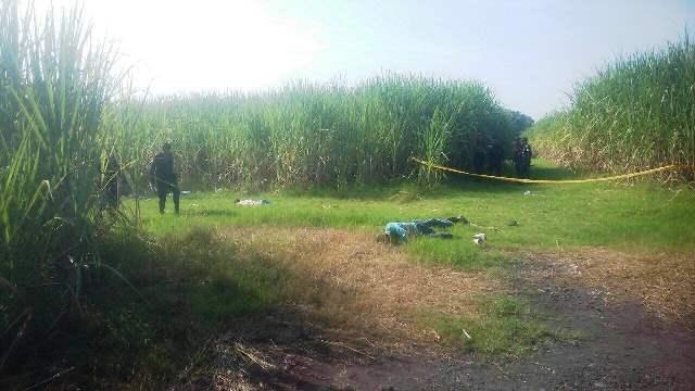 Los cuerpos fueron dejados en la finca Montaña Larga, parcelamiento Santa Isabel, Puerto San José. (Foto Prensa Libre: Carlos Paredes)