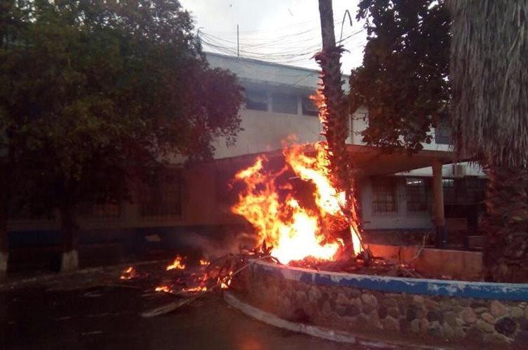 Palmera incendiada al ser impactada por un rayo en Zacapa. Foto Prensa Libre: Mario Morales.