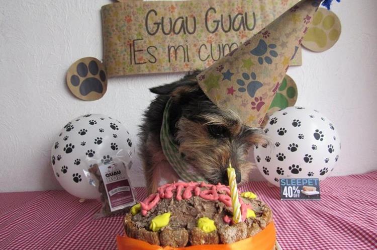 En combo de cumpleañero incluye un pastel hecho con ingredientes naturales, un gorro para su perro y otros regalos. (Foto Prensa Libre: Guaubox).