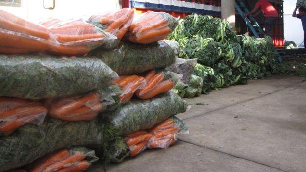 """El extraordinario tamaño de los vegetales que produce le dieron la fama a Almolonga de el """"jardín de las Américas""""."""