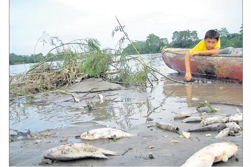 Vecinos que viven de la pesca tienen prohibido utilizar el agua del río Motagua para consumo humano debido a la muerte de peces. 2/7/2008. (Foto: Hemeroteca PL)
