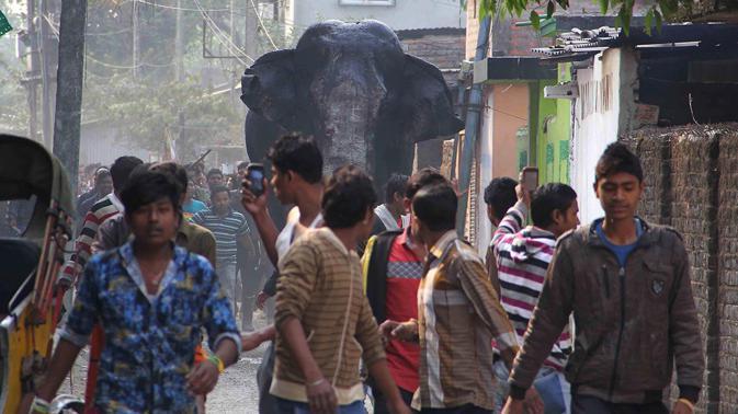 Elefante causa temor en ciudad india.