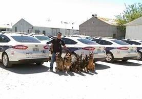 René García Yac posa junto a varios perros policías a los que entrenó en detección de drogas en Estados Unidos. (Foto Prensa Libre: cortesía de René García Yac)