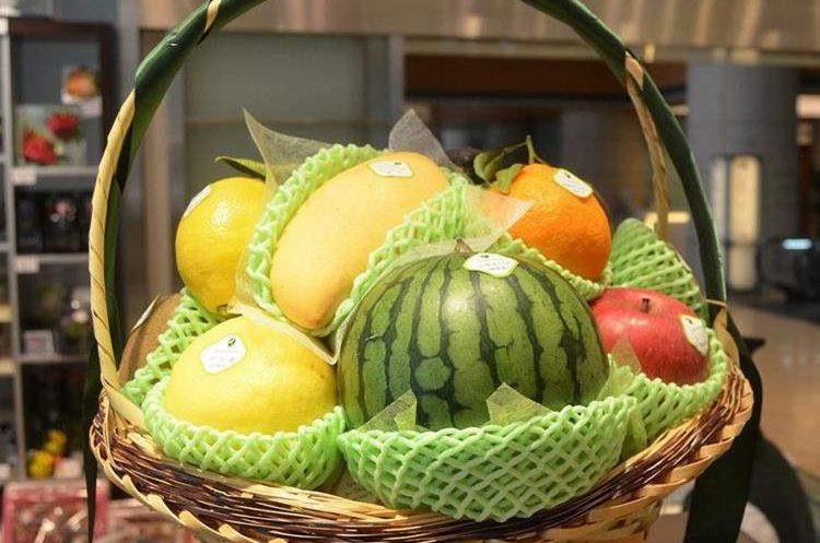 La producción de fruta es muy selecta en Japón, debido a que su particular orografía permite que solo un 15% de su superficie total esté cultivada.