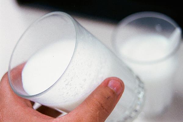 Es importante consumir lácteos sin lactosa para proveer al cuerpo del nivel de calcio necesario para fortalece la estructura ósea.