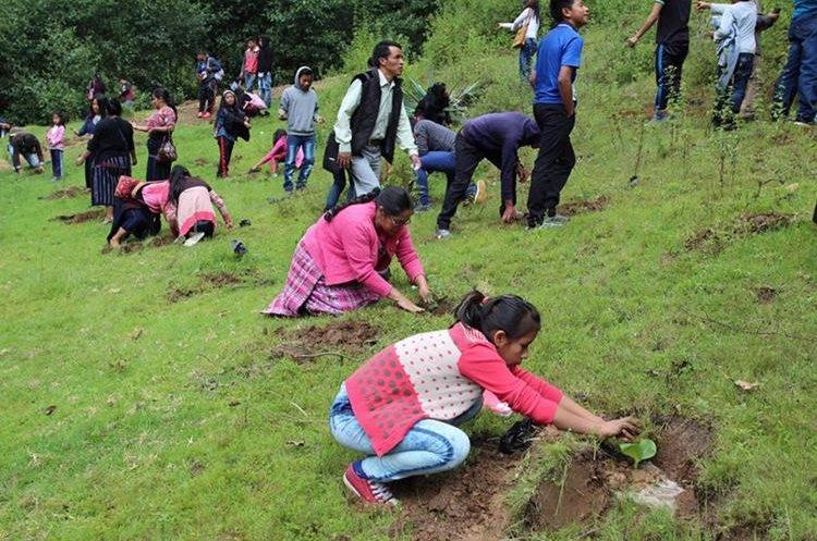 Siembra de árboles mejorara ambiente para vecinos de Nahualá. (Foto Prensa Libre: Ángel Julajuj).