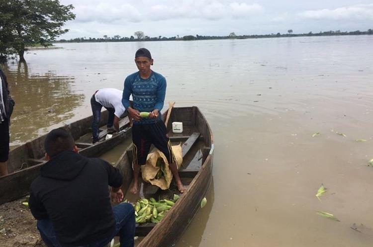 Agricultores tratan de rescatar algunos productos de sus cosechas. (Foto Prensa Libre: Eduardo Sam Chun)
