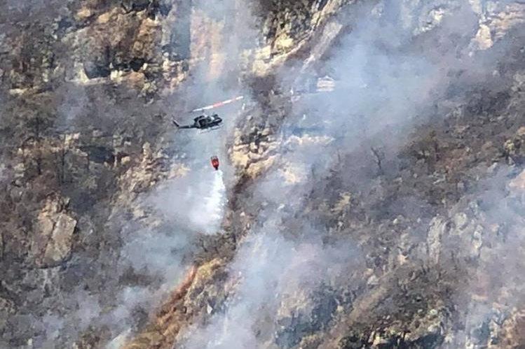Reportan 45 incendios forestales en el estado
