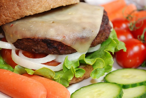 Muchos investigadores llevan desarrollando alimentos más saludables que aporten compuestos bioactivos para un efecto saludable al organismo.