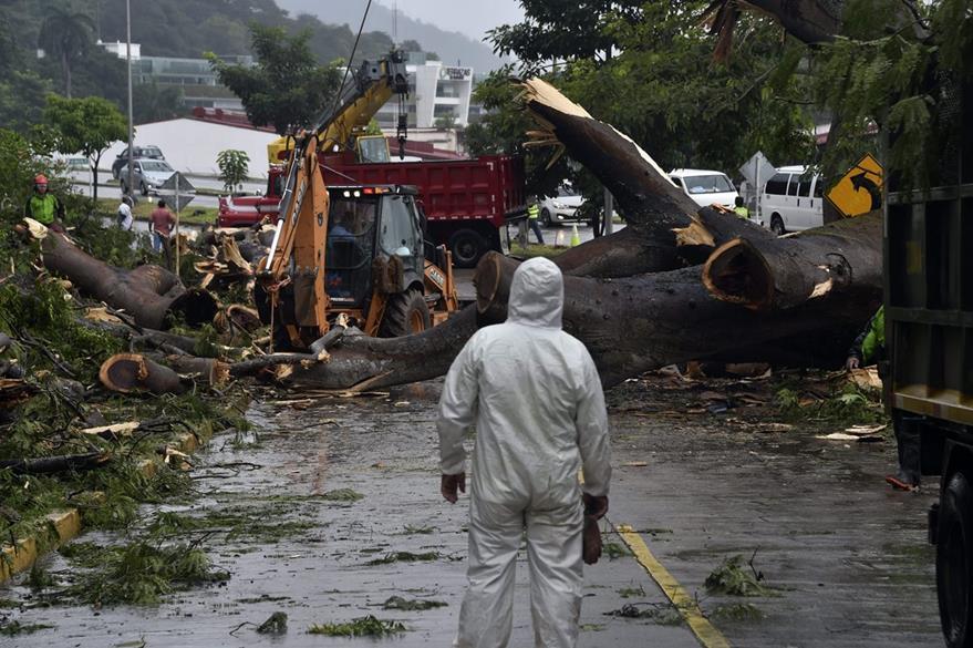 Daños causados por Otto en Panamá. (Foto Prensa Libre: AFP)