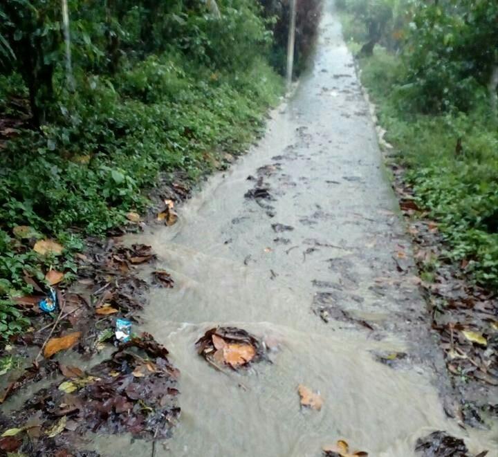 El sendero que conecta a la escuela se inunda con las aguas pluviales y las corrientes dejan en riesgo a la niñez. (Foto Prensa Libre: Ada Wellmann)