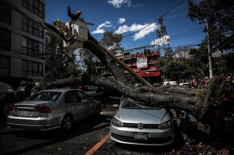La inesperada tormenta invernal en México ha causado al menos cuatro muertos. (Foto Prensa Libre: EFE).