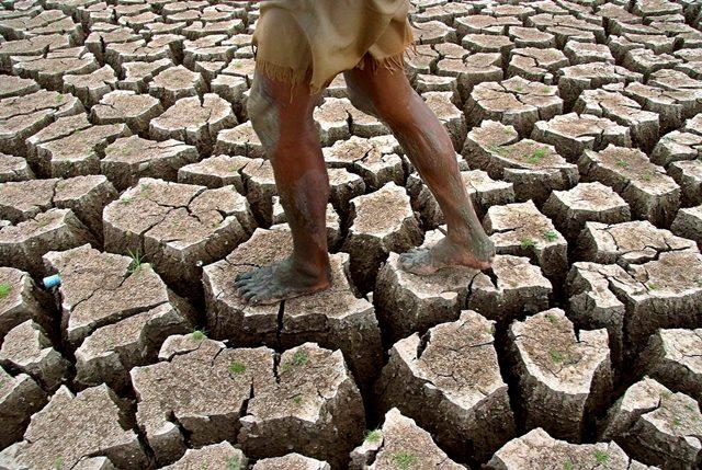 Un hombre camina sobre un terreno muerto, en Bangkok, Tailandia, la variación de los ciclos climáticos ocasiona sequías que llegan a ser mortales. (Foto Prensa Libre: Hemeroteca PL).