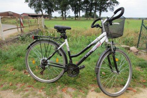 Esta es la bicicleta en la que la menor se trasladó hasta Polonia para visitar a su abuela. (Foto: Polizeiinspektion Lüneburg).