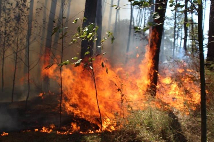 El incendio permanece activo en un área boscosa de El Tejar, Chimaltenango. (Foto Prensa Libre: José Rosales)