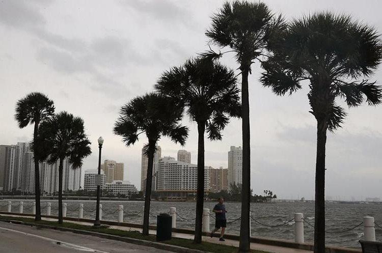 Varias zonas de Miami han sufrido los primeros cortes de energía eléctrica con los primeros efectos del Huracán Irma. (Foto Prensa Libre: AFP)