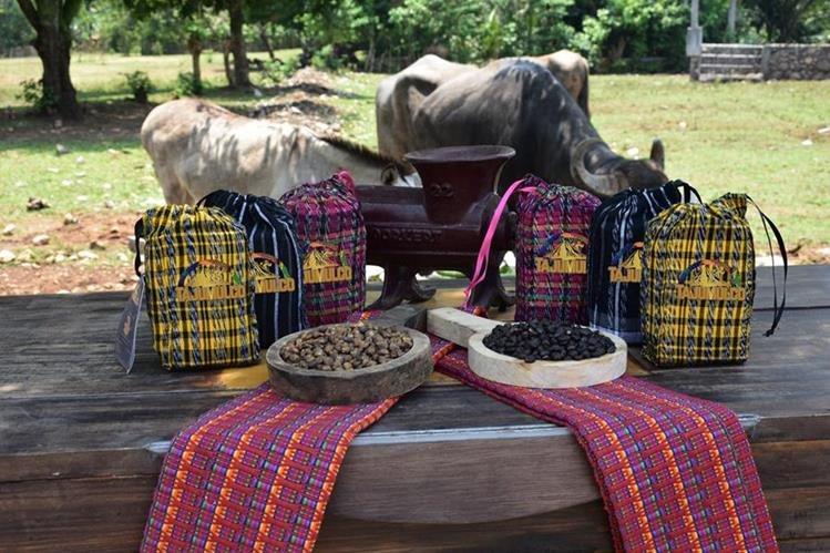 Las semillas de maíz negro que se utilizan para convertirlas en bebida de café provienen de Chimaltenango. (Foto Prensa Libre: Café Tajumulco)