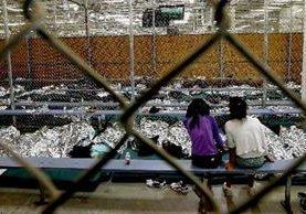 Estados Unidos busca identificar y capturar a los adultos que ayudaron a niños no acompañados para llegar a ese país. (Foto Prensa Libre: Hemeroteca)