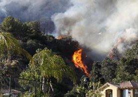 incendio forestal quema árboles en los alrededores de casas en Azusa, California.