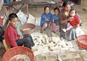 Catalina Sal Ajquí, junto a sus cuatro hijos en su vivienda en San Andrés Itzapa, recuerda que su hija Elsa —en brazos— estuvo siete meses en un centro de recuperación nutricional. (Foto Prensa Libre: José Rosales).