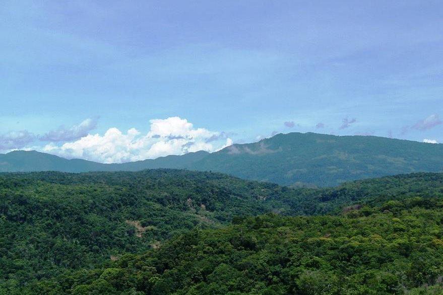 Selva colombiana donde cayó un helicóptero de la Policía. (internet)