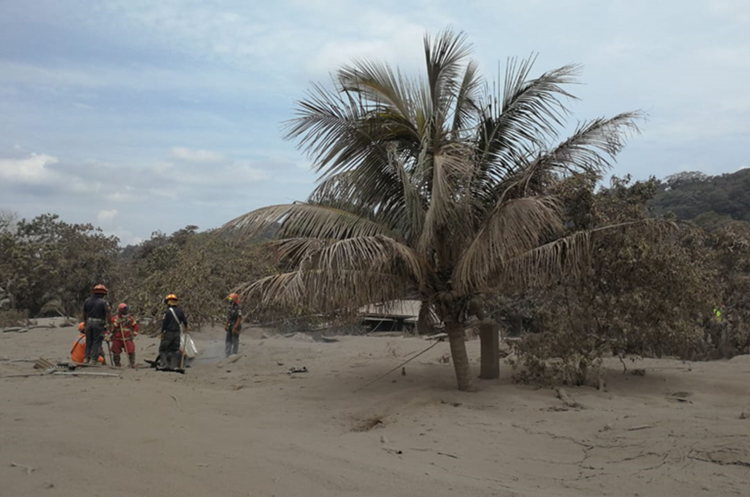 La colonia San Miguel Los Lotes quedó sepultada bajo las cenizas del Volcán de Fuego. (Foto Prensa Libre: Érick Ávila)