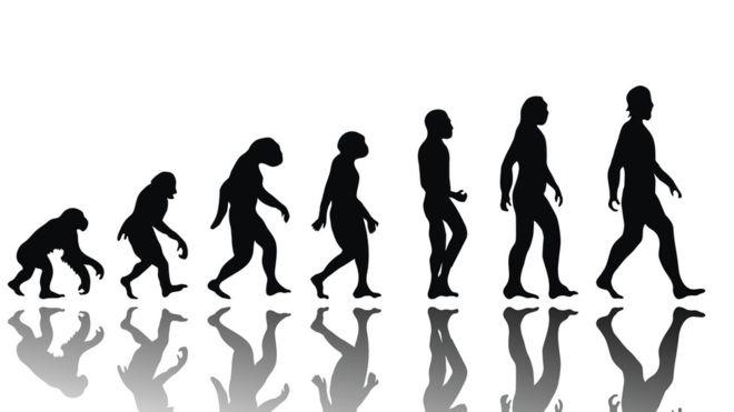 ¿Qué vendrá después del Homo sapiens? (THINKSTOCK).